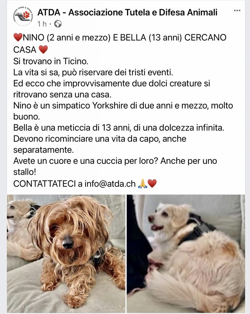 ATDA Nino & Bella