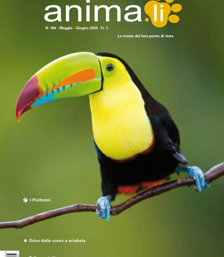 Animali copertina 106
